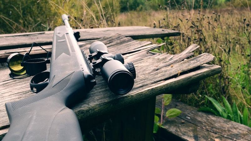 Gamo big cat 1250 air rifle review
