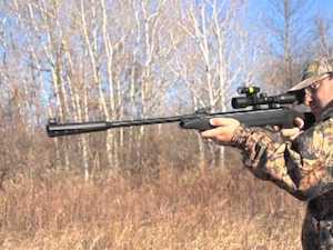 Gamo Whisper Silent Cat Air Rifle Review [The Ultimate