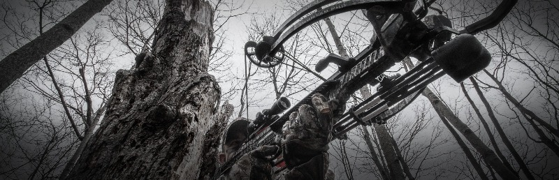 Barnett C5 Wildcat Crossbow Review [Jack Of All Trades]