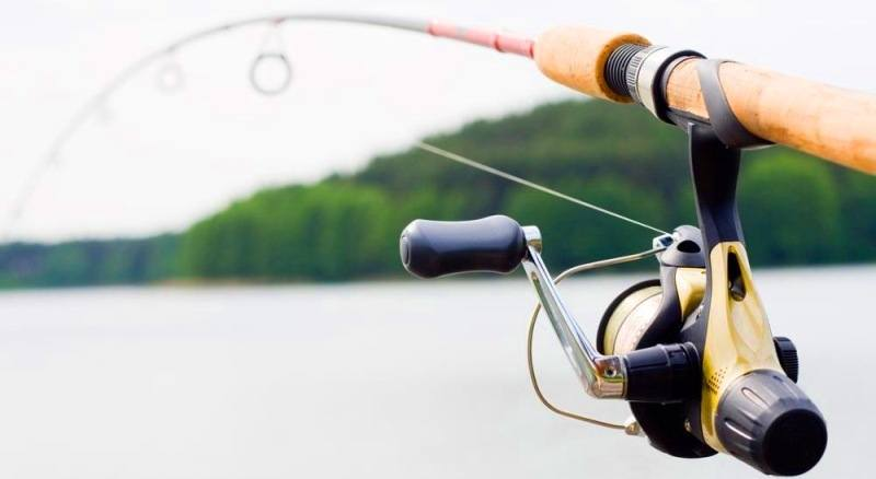 Fenwick HMG Spinning Rod Review [Is This The One True Rod?]