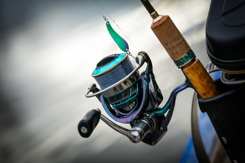 Lews Reels Reviews [Top 3 Models Discussed with Buyer's Guide]
