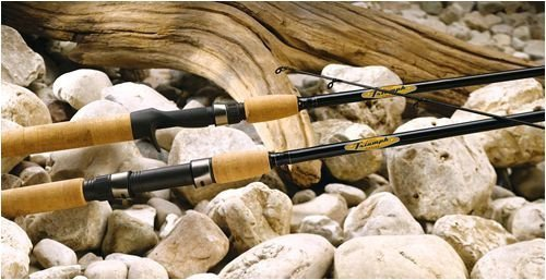 St croix triumph casting rod review